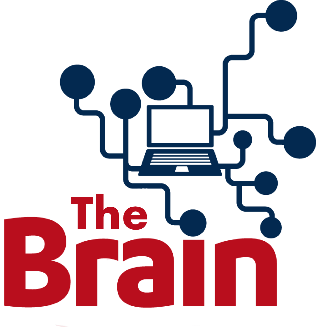 The Brain Virtual Learning Environment